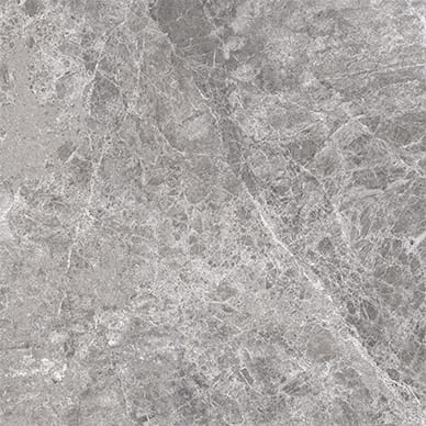 Lizard-Grey-Tile-600x600